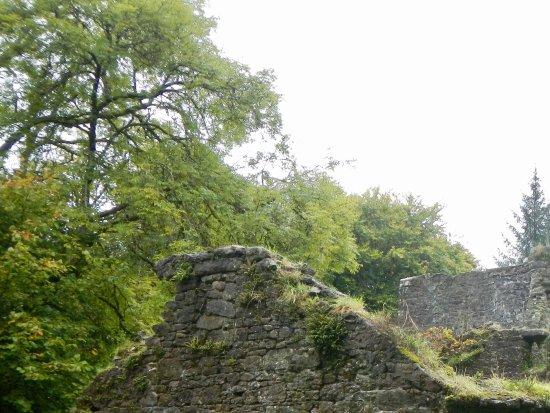 Carey's Castle: a hidden gem