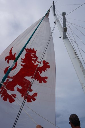 Aristocat Charters: Mainsail of the Lionhart