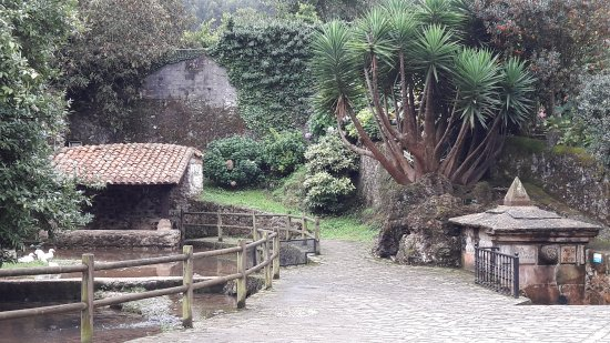 Ayuntamiento de Alfoz de Lloredo
