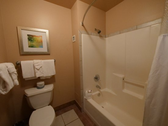 The Estes Park Resort: Bathroom with shower and toilet