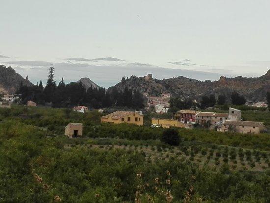 Blanca, España: La Finca
