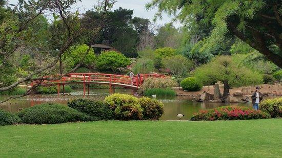 Japanese Garden: TA_IMG_20171001_105214_large.jpg