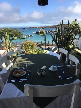 Casa Opuntia Galapagos: View from breakfast