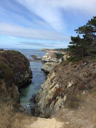 Point Lobos State Reserve: photo2.jpg