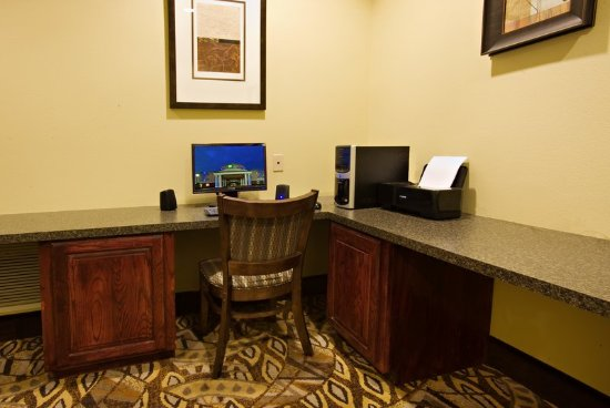 Holiday Inn Express Hotel & Suites Snyder: Business Center