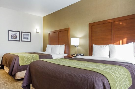 San Bruno, Californien: Guest room with two beds