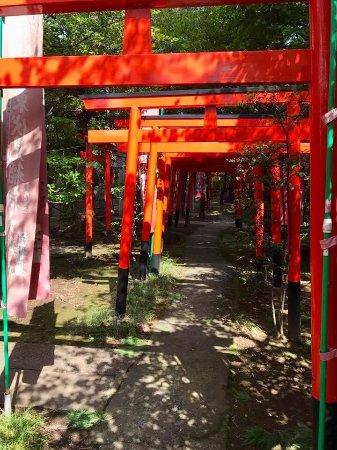 Nishitokyo, Japón: photo6.jpg
