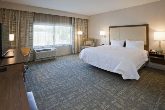 Spicer, MN: King Bed Guest Room