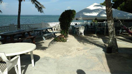 Vivine S Kitchen Cayman Islands