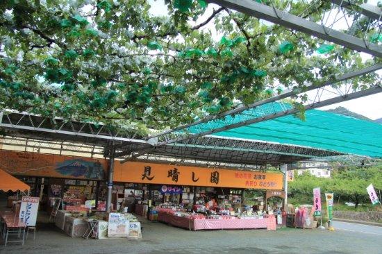 Fuefuki, Giappone: 見晴し園
