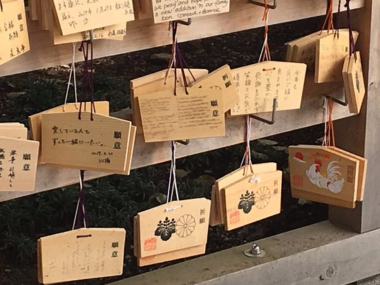 Japan Gray Line - Day Tours: Tokyo Day Tour