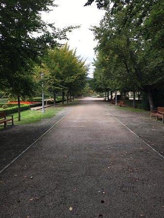 Parque de La Taconera: photo6.jpg