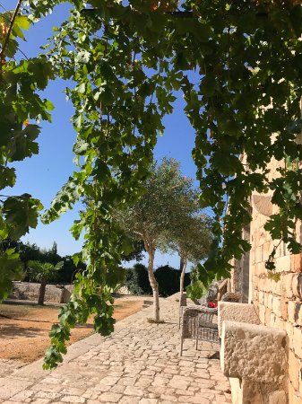 Villa Quartarella Photo