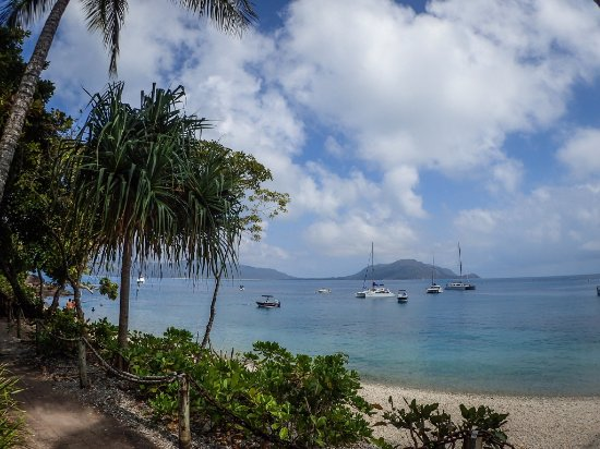 Fitzroy Island Resort: Boats moor in the protected harbour on the island