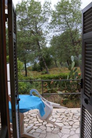 La Francesca: вид из гостиной на террассу и кактусы
