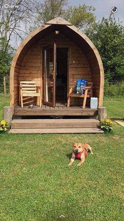 Welland, UK: our duke enjoying his holiday
