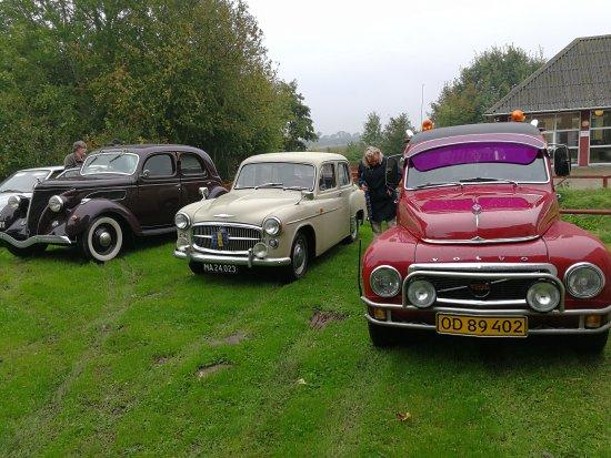 FB_IMG_1506847277268_large.jpg - Billede af Andelslandsbyen Nyvang, Holbæk - TripAdvisor
