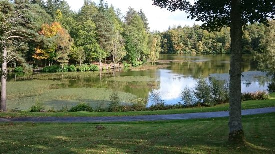 Selkirk, UK: start of autumn, Bowhill upper lake