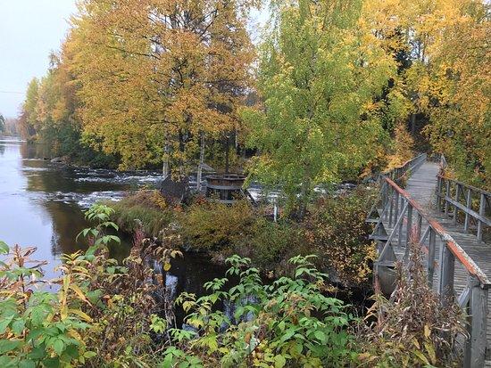 Robertsfors, Swedia: photo0.jpg
