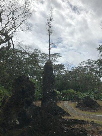 Pahoa, HI: Lava Tree State Park