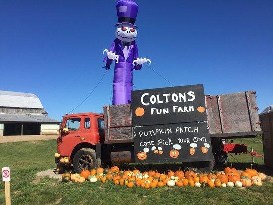 Colton's Fun Farm
