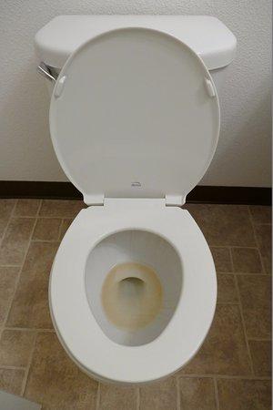 Kernville, CA: Les toilettes.... Couleur pas très engageante...