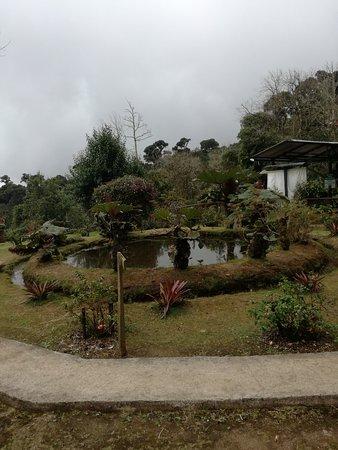 San Gerardo de Dota, Costa Rica: IMG_20170903_134650_large.jpg