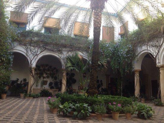 photo1.jpg - Picture of Palacio de Viana, Cordoba - TripAdvisor