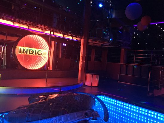 ‪Indigo Night Club‬