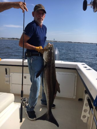 Angry pelican charters oak island all you need to know for Oak island fishing charters