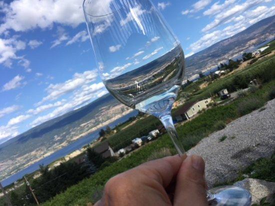 Summerland, كندا: Aussicht von der Terrasse