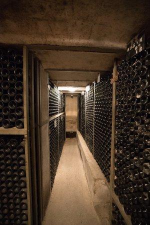 Aloxe-Corton, فرنسا: Cellars