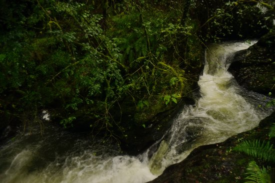 Lydford, UK: Going down the gorge