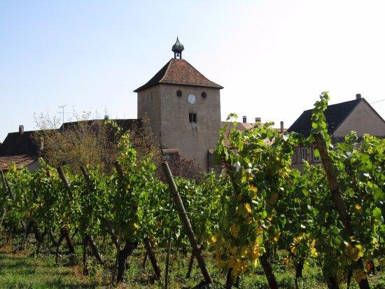 Turckheim, France: Troisième Porte vue du Belvédère dans le vignoble