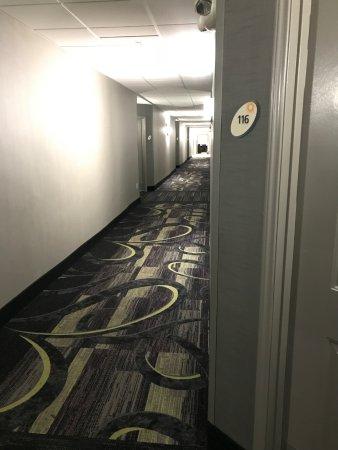 La Quinta Inn & Suites Grand Junction: Very contemporary decor