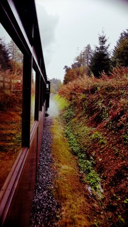 On the Brecon Mountain Railway, on a drizzly Sunday morning.