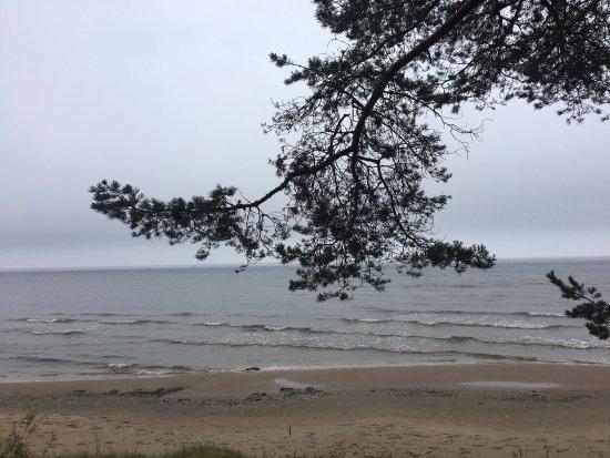 Kurzeme Region照片