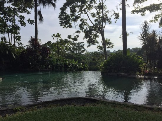 Sarapiquis Rainforest Lodge: photo0.jpg