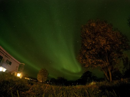 Troms, Norvège : Northern lights, right behind the hotel