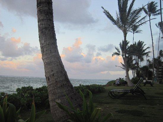 Pat's at Punalu'u: Beach area at dusk