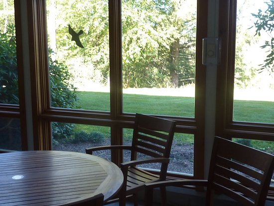 Blackwater Falls State Park Lodge Updated 2018 Prices