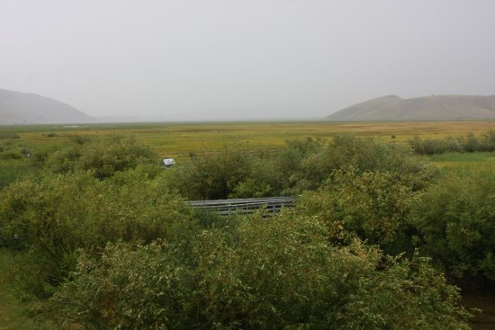 Jackson Hole, WY: There is a viewing platform for the Elk Refuge behind the visitor center.
