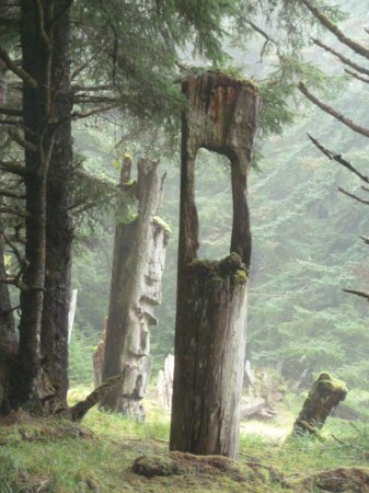 Ocean Sound Kayaking: Mortuary Totem, S'Gang Gwaay