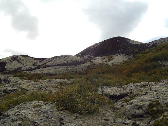 Bifrost ภาพถ่าย
