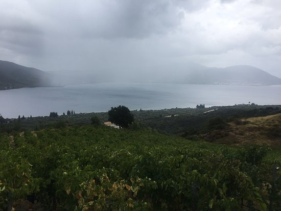 Vriniotis Winery: View from the winery