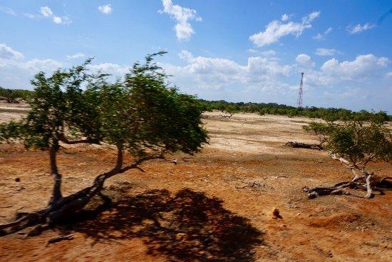 Tissamaharama, Sri Lanka: photo8.jpg