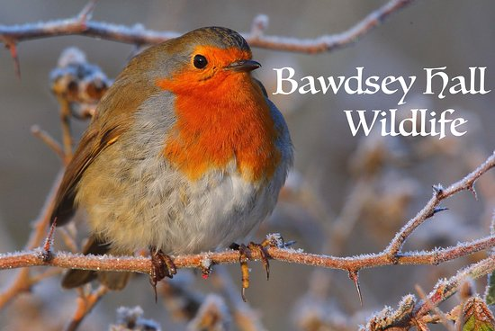 Bawdsey Hall is open all year for Winter Wildlife.
