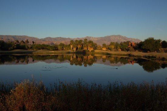 Embarc Palm Desert: Sunrise at Embarc, Palm Desert. This is taken from the adjacent Desert Willow golf course.