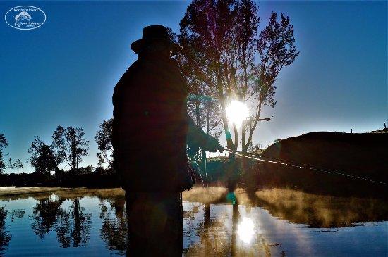 Federal, أستراليا: Fly fishing at dawn