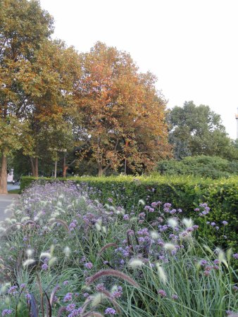 jardins floridos da Karlsplatz